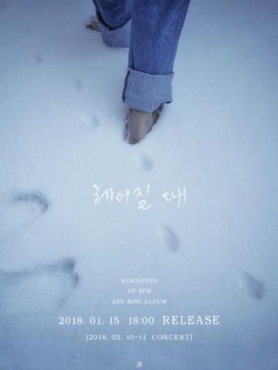 2PMウヨンソロコンサート