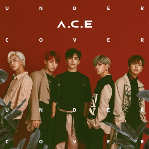 A.C.E 1st CONCERT [UNDER COVER : AREA NO.1 KOREA]チケット代行